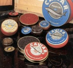 Beginner's Caviar Sampler Gift Set – Bowfin, Whitefish, Salmon, Lumpfish, and Capelin