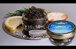 OLMA Black Caviar Hackleback Sturgeon 1 oz (28g) Glass Jar