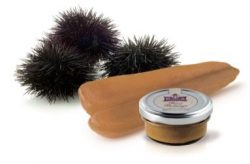 Bottarga with Sea Urchin and Olive Oil paste, The Finest From Sardinia Italy 1.76 Oz