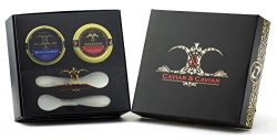 GUARANTEED OVERNIGHT! Luxury Gift Box with 2 SPOONS 1oz River Beluga Kaluga hybrid & 1oz Sib ...