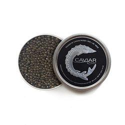 Caviar Russe Select Osetra Caviar, Caspian Sea Caviar, 1.75 oz (Acipenser Gueldenstaedtii)