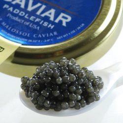 Marky's Paddlefish Caviar, Spoonbill – 16 oz
