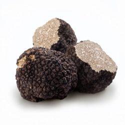 French Fresh Summer Black Truffle, Whole – 4 oz