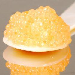 Tobiko Golden, Capelin Sushi Caviar – 2 oz