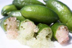 Finger Limes aka Citrus Caviar (80 grams)