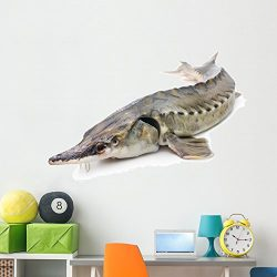 Wallmonkeys Sturgeon Fish Wall Decal Peel and Stick Graphic WM38226 (60 in W x 40 in H)