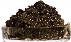 Beluga Hybrid Sturgeon Caviar