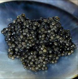 Grey Sevruga Caviar, Malossol – 2 oz