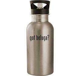 got beluga? – Stainless Steel 20oz Road Ready Water Bottle, Silver