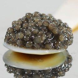 American Paddlefish Caviar Malossol – 9 oz