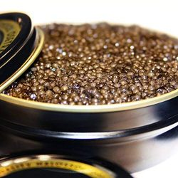 500g/17.6oz True Osetra Caviar, Classic Grade, Sustainable Product of the U.S.A.