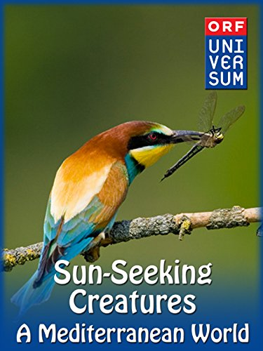 Sun-Seeking Creatures – A Mediterranean World