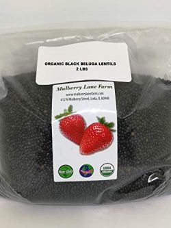 Black Beluga Lentils 2 Pounds Whole USDA Certified Organic,, Non-GMO Bulk