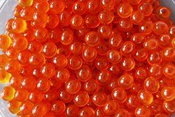 Salmon Red Caviar, Premium Chum Roe 1.1 lb | 500 g